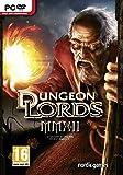 Dungeon Lords MMXII (PC DVD) - [Edizione: Regno Unito]
