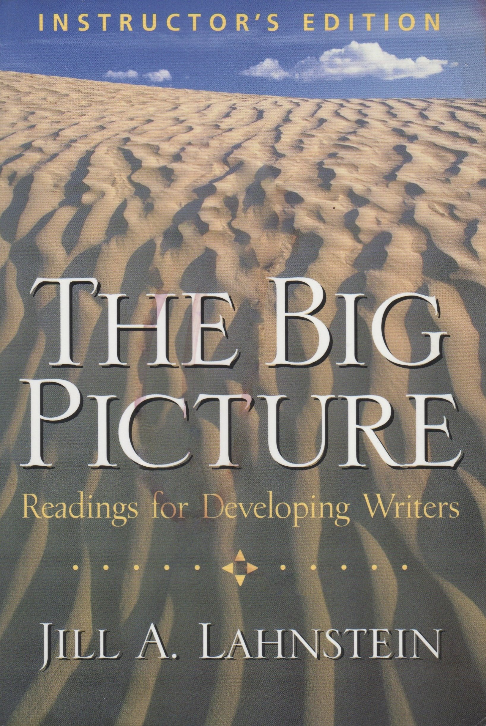 Read Online The Big Picture: Readings for Developing Writers pdf epub
