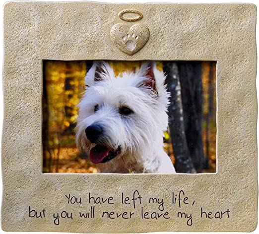 New bone shaped dog picture frame light brown