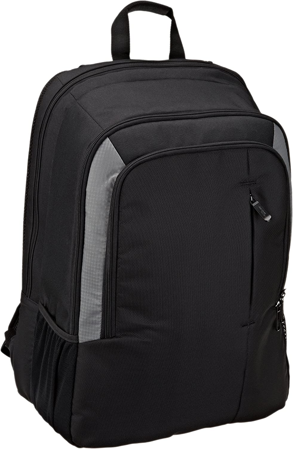 Basics Laptop Computer Backpack - Fits Up To 15 Inch Laptops: Computers & Accessories