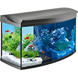 Tetra Poissons Eau Douce Tropicale AquaArt Evolution Line 100 L