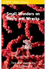 Small Wonders on Reefs and Wrecks Kindle Edition