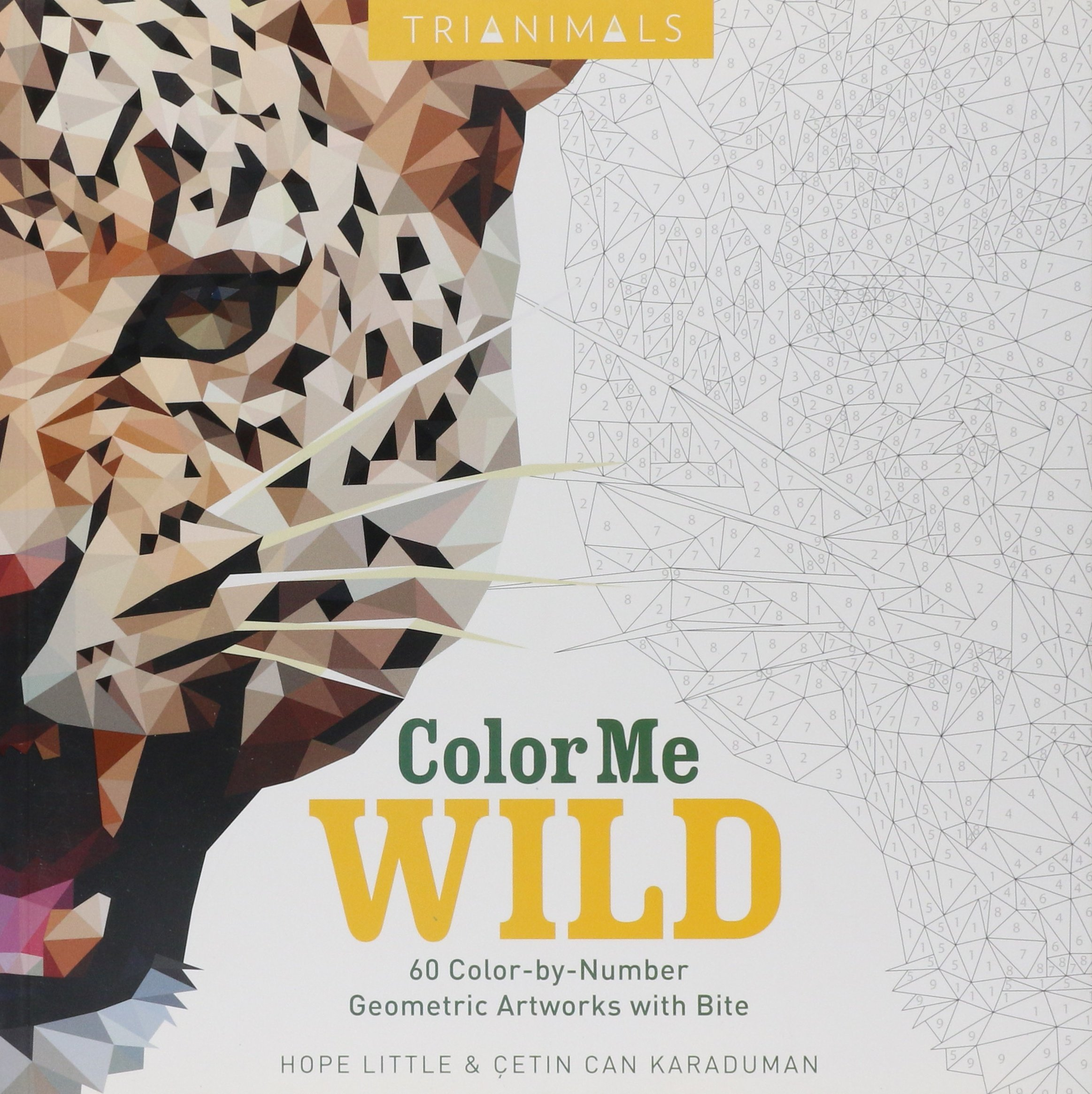 Trianimals: Color Me Wild: 60 Color-by-Number Geometric Artworks with Bite:  Hope Little, Cetin Can Karaduman: 9780062484512: Amazon.com: Books