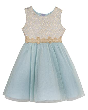 Amazon.com: Rare Editions Girls' Brocade to Mesh Social Dress ...