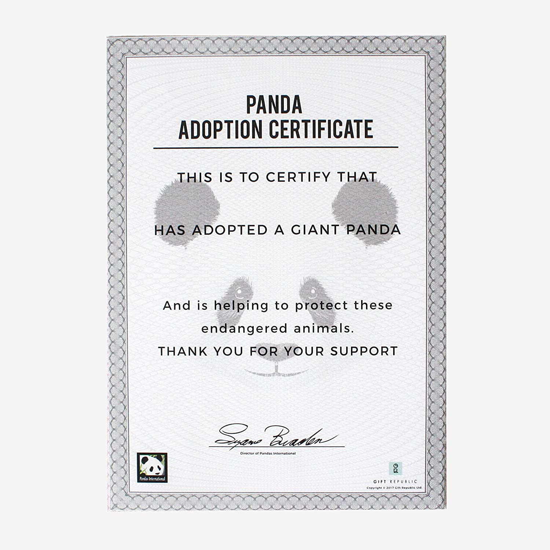 Amazon Gift Republic Adopt A Panda Gift Box Home Kitchen