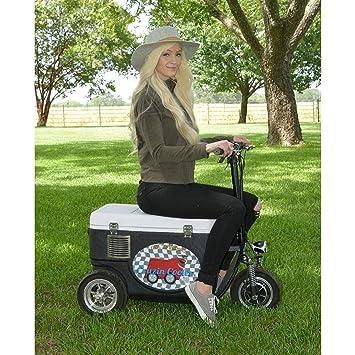 Amazon.com: Cruzin Cooler CZ-HB - Patinete de hielo ...