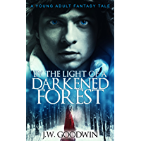 By The Light Of A Darkened Forest (English Edition)