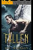 Fallen: An Angel Romance