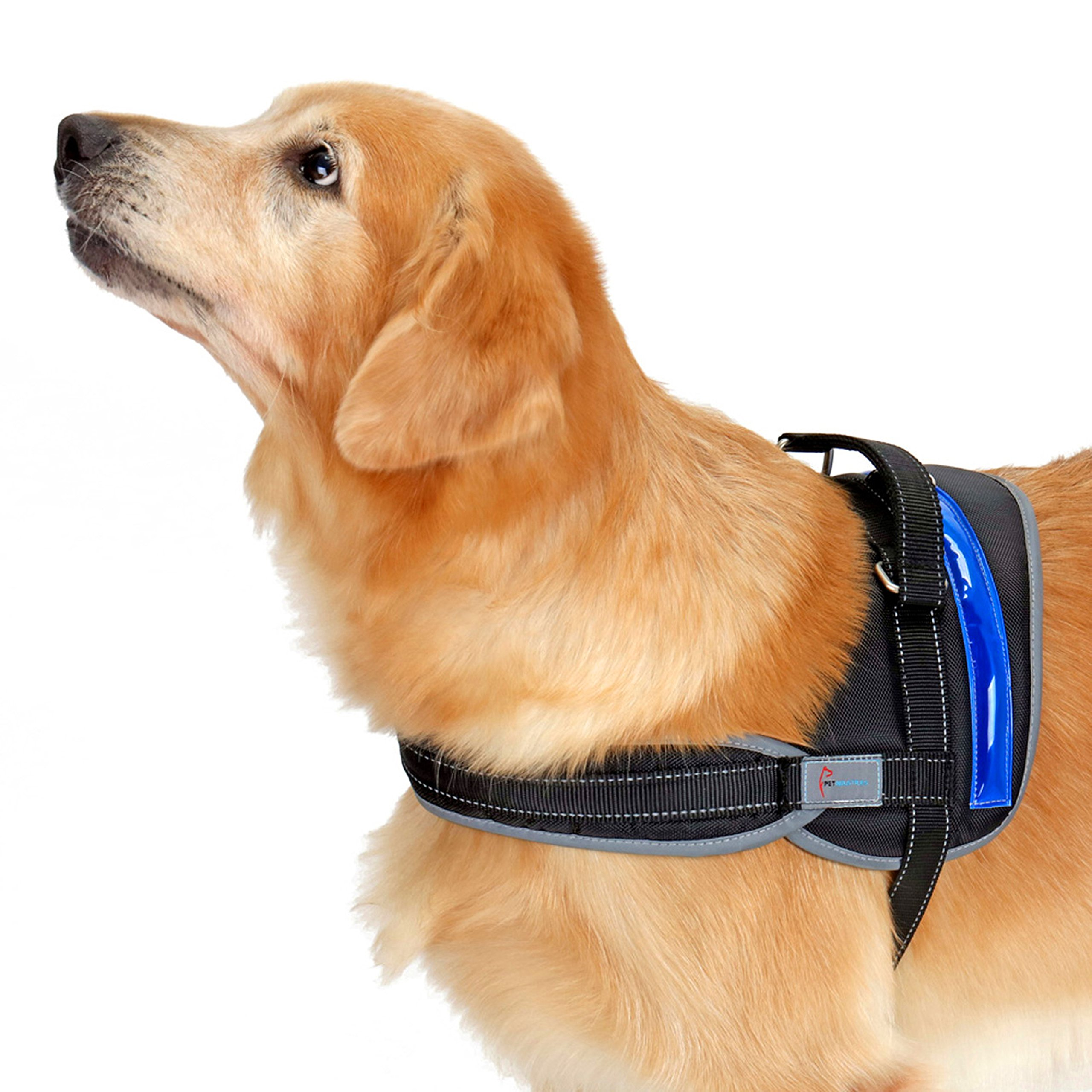 Heavy Duty Reflective Dog Harness with Safety Features [Premium Edition] Available in 4 Sizes, Specially Designed for Medium-Large Dog Breeds (Large, Electric Blue) by Pet Industries (Image #1)