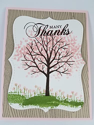 Amazon many thanks hand stamped greeting card package of 1 many thanks hand stamped greeting card package of 1 m4hsunfo