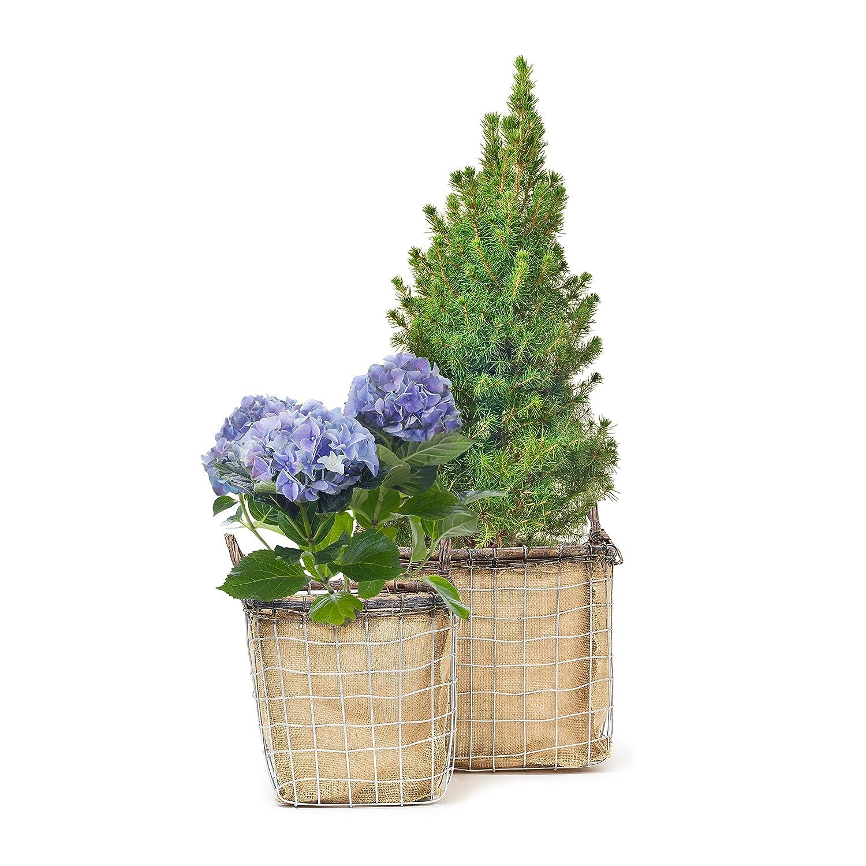 Relaxdays-10020061_439 Lot de 2 paniers carrés hauts corbeille à fleurs plantes bac pot boîte métal et tissu en jute avec poignées maison jardin, couleur naturelle