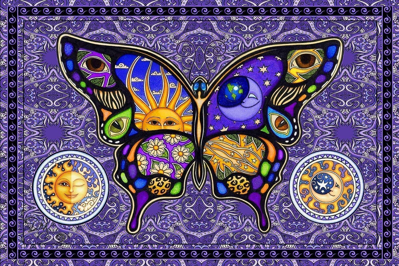 """B016FS2H2O Bohemian Butterfly Tapestry by Dan Morris, 40""""x60"""" 91mWgFYwBvL"""