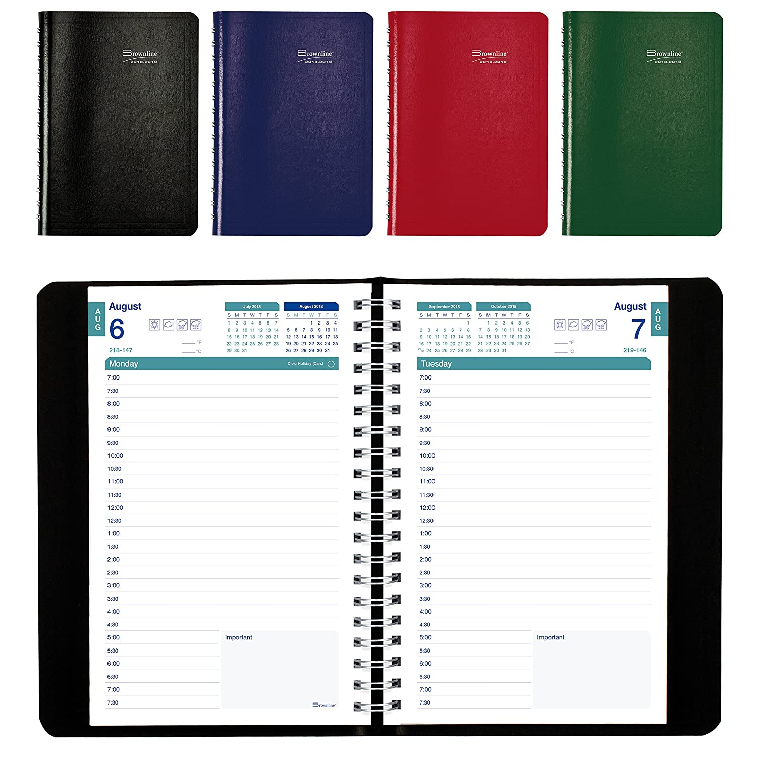 Brownline 2018-2019 Appointment Book/Academic Daily Planner, 8x5, August 2018 to July 2019, Assorted Colours, English (CA201.ASX-2019) 8x5 Blueline Canada CA201.ASX-19