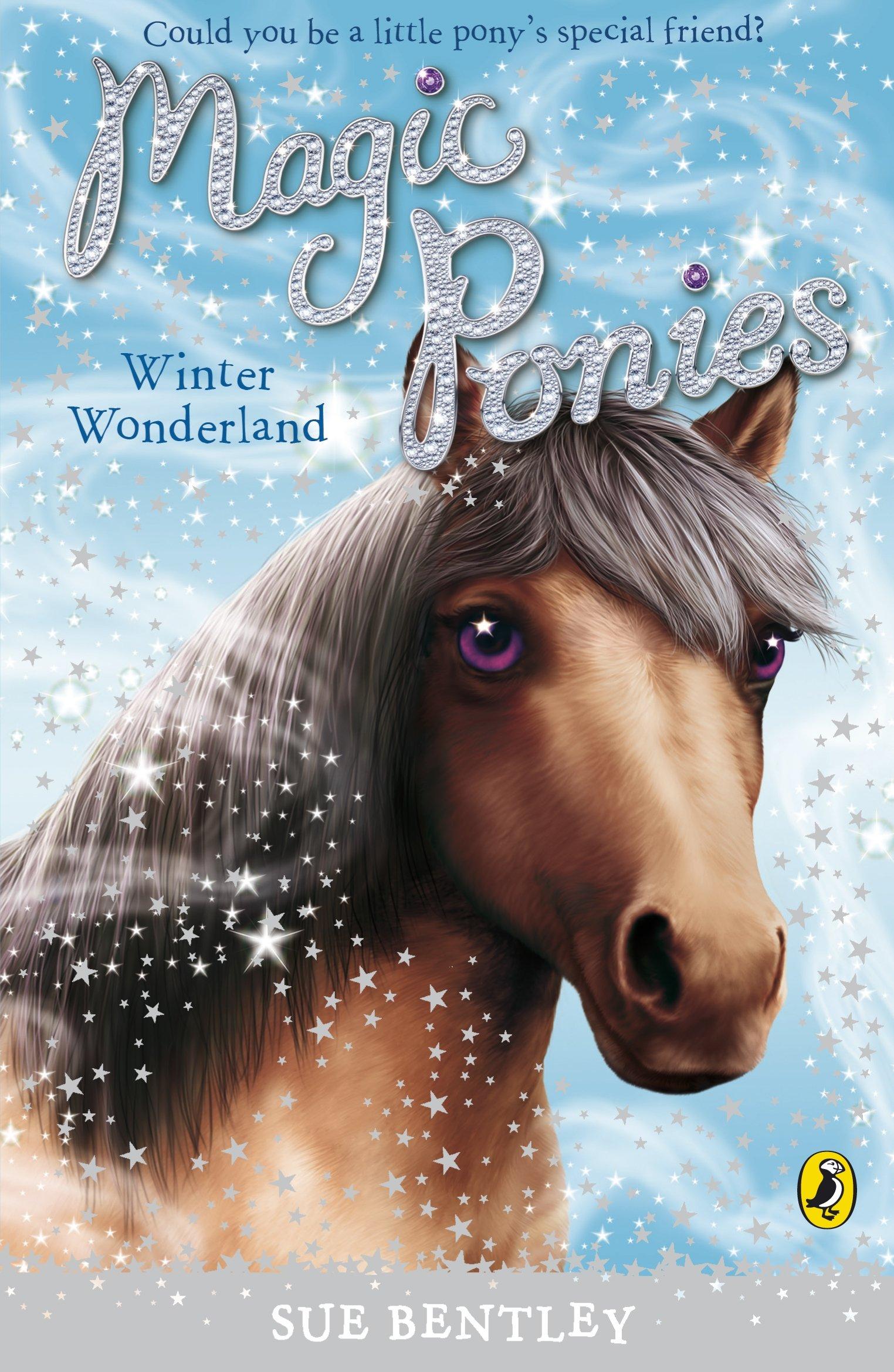 Magic Ponies: Winter Wonderland pdf