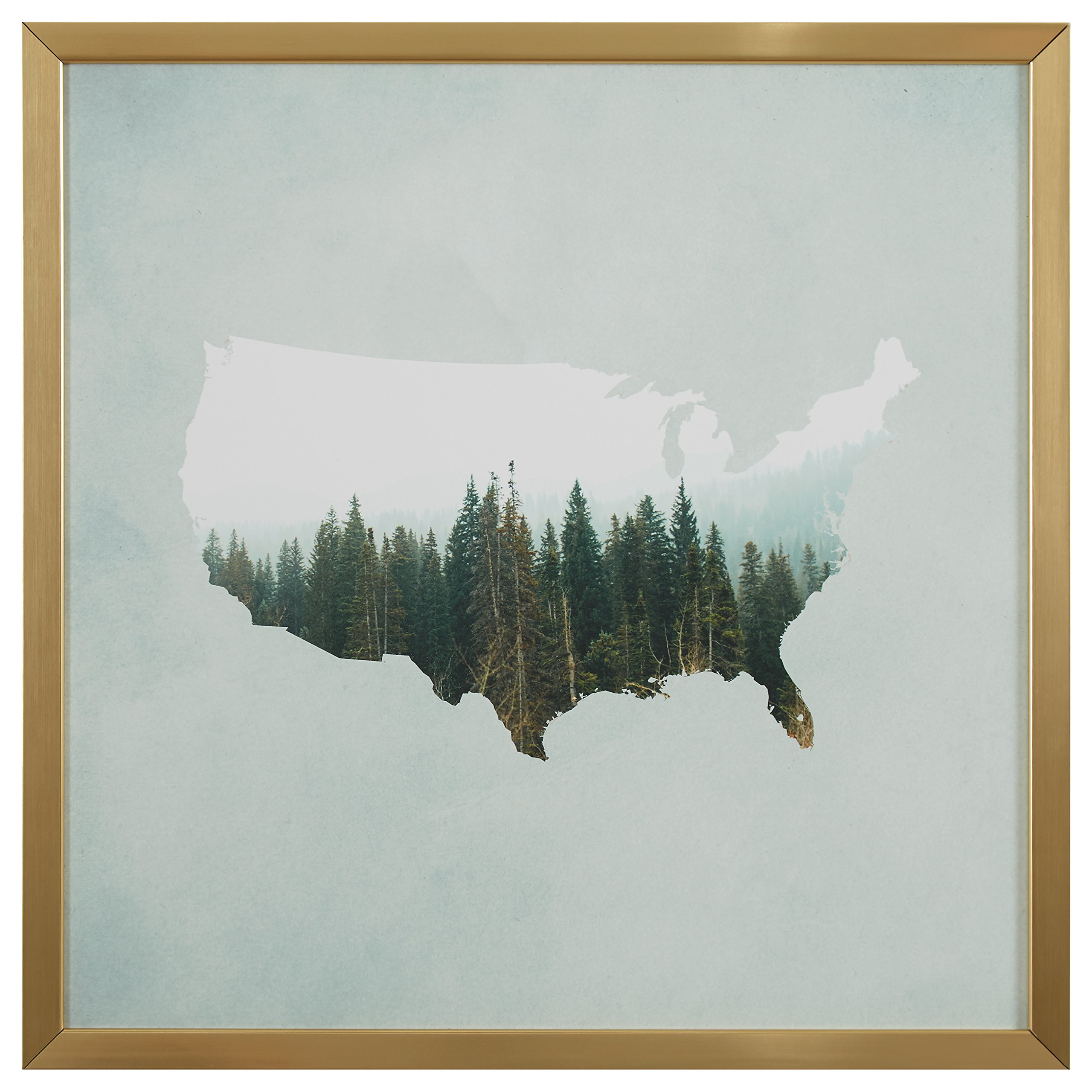 American Forest Map Print in Gold Wood Frame, 30'' x 30'' by Rivet