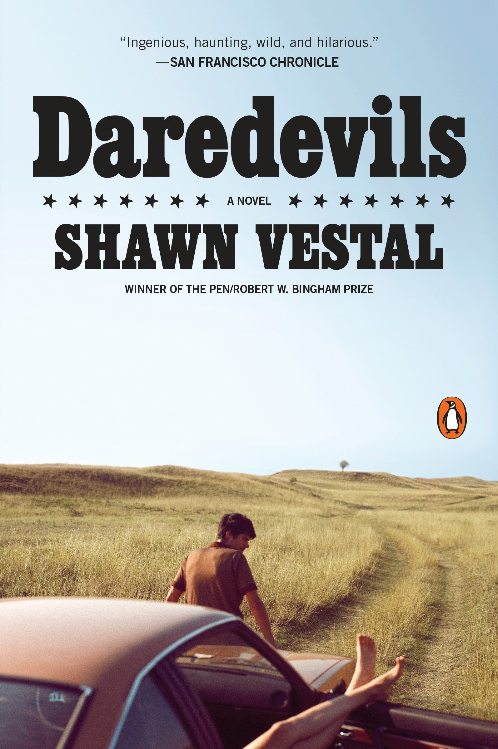Download Daredevils: A Novel pdf epub