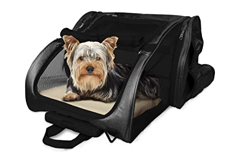 Amazoncom Furhaven Pet Backpack Roller Carrier For Dogs And Cats