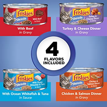 best food for cats under 1 year old