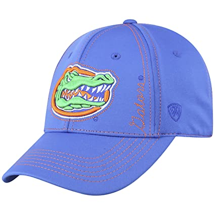 premium selection b0199 fb311 Image Unavailable. Image not available for. Color  Top of the World Florida  Gators Official NCAA One Fit Learning Curve Hat ...