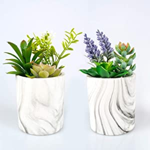 CADEAU Artificial Succulent Plants - Set of 2 Pots - 6 Colorful and Realistic Fake Succulents in Modern Marble Design Pot-Medium Size of Fake Decorative Large Plant Potted-Indoor Decor for Home Office