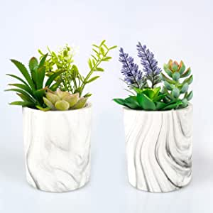 CADEAU Artificial Succulent Plants, 6 Aesthetic Faux Succulents in 2 Modern Pots, Fake Potted House Plant for Home Decorations, Cute Living Room Decor for Bedroom Kitchen Patio Bathroom Office Desk