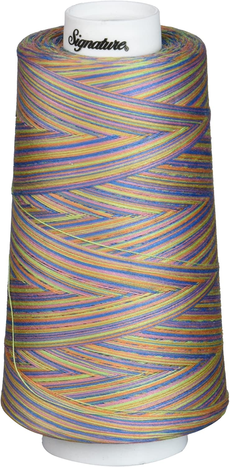 3000 yd Signature Cotton Quilting Thread Variegated Summery Fun