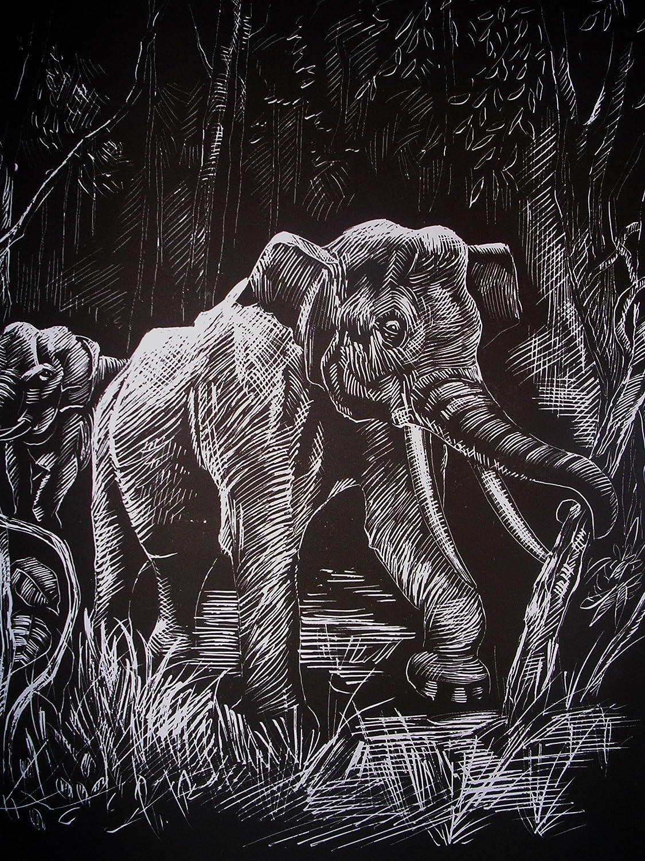 WASO-Hobby - 4er Scrapy Kratzbilder Set - Afrikanische Tiermotive / Silber *Groß*