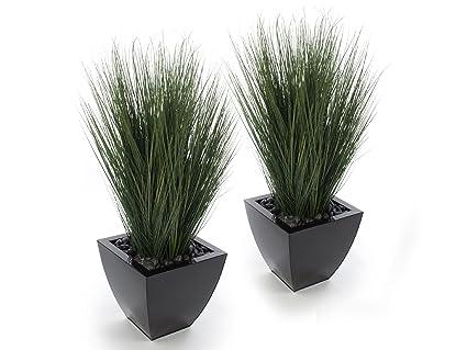 Amazon.com: Closer2Nature Artificial 3ft Onion Gr Plants ... on tree home furniture, tree patio, tree home design, tree interior, tree home water, tree bathroom,