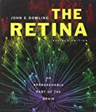 The Retina: An Approachable Part of the Brain, Revised Edition