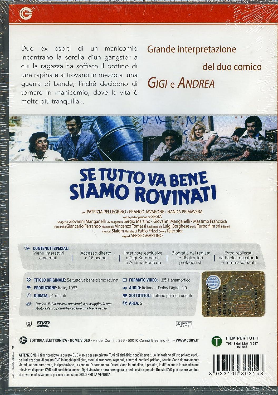 Amazon.com: Se Tutto Va Bene Siamo Rovinati: gigi sammarchi ...