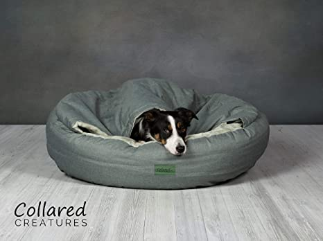 Collared Creatures Deluxe Comfort - Cueva para Perro, Color Verde