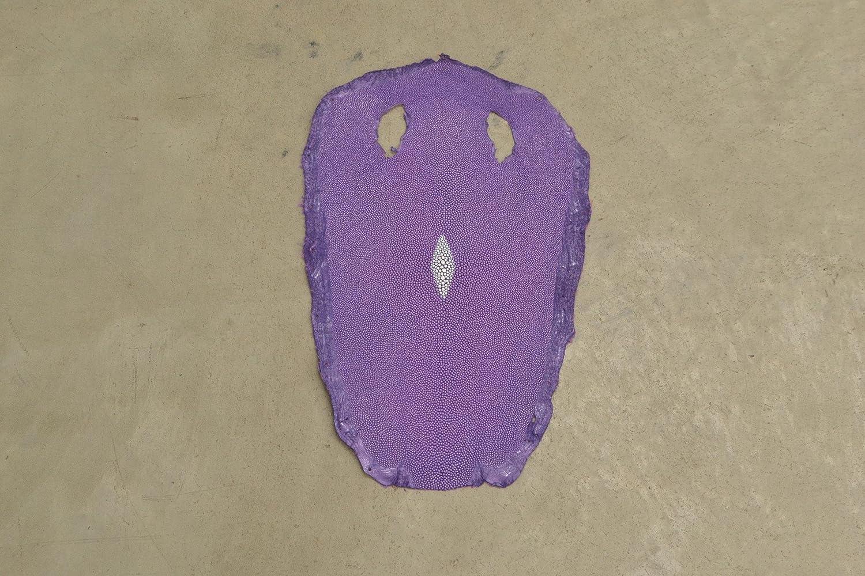 Stingray Skin Bellflowerラベンダー13