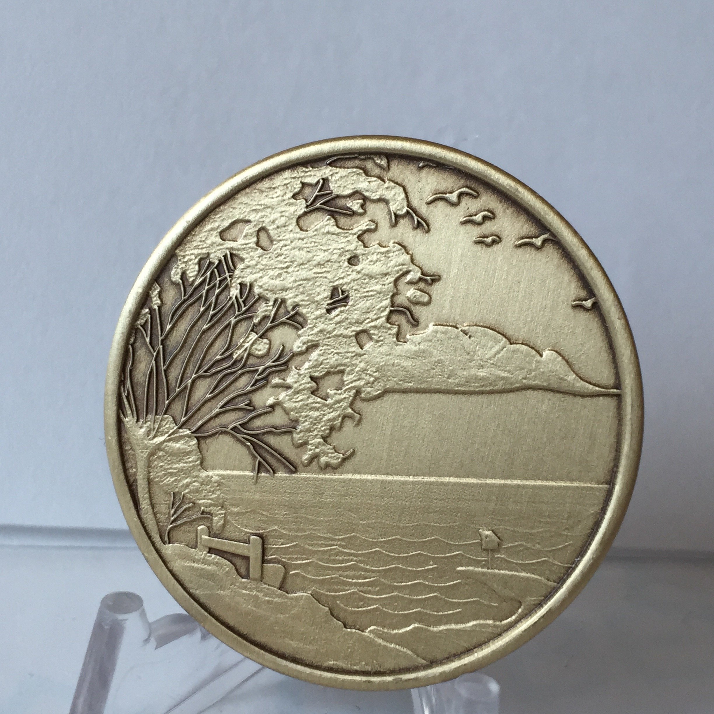 Bulk Lot of 25 Serenity Lake Peace Within The Storm Bronze Medallions Chip Wholesale Set by RecoveryChip (Image #7)
