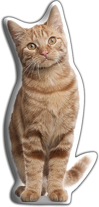 Car Pets Ltd Chat Roux Tigre L Hug Me Calins Coussin