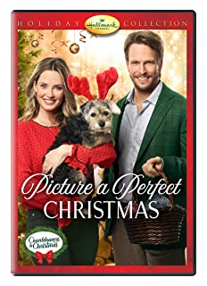 Book Cover: Picture a Perfect Christmas