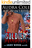 A Soldier For Christmas: An Army Wives Novella