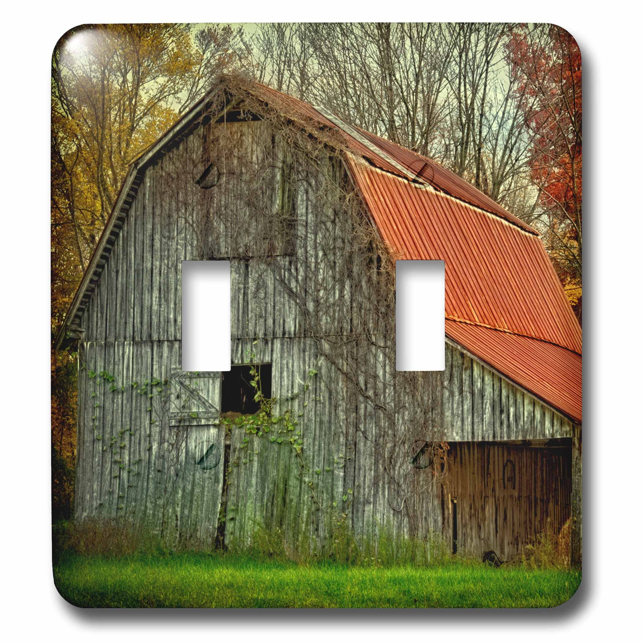 Danita Delimont - Rural - USA, Indiana. rural landscape, vine-covered barn with red roof - Light Switch Covers - double toggle switch (lsp_230816_2) by 3dRose
