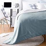 AmazonBasics Ultra-Soft Micromink Sherpa College Dorm Blanket - Twin, Tide Pool Blue