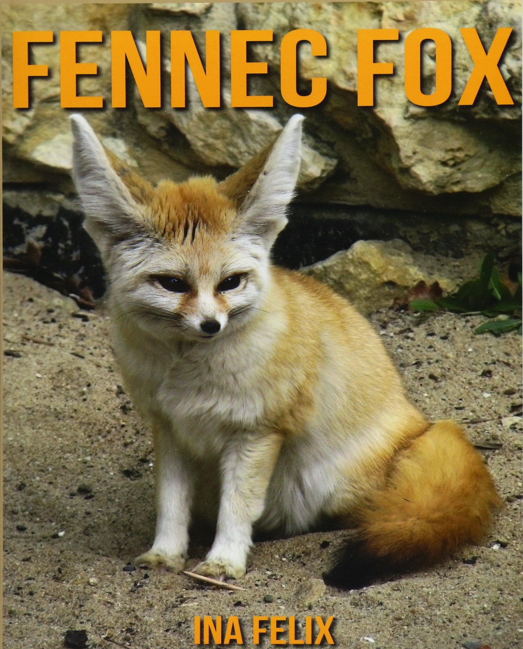 Download Fennec fox: Children Book of Fun Facts & Amazing Photos on Animals in Nature - A Wonderful Fennec fox Book for Kids aged 3-7 PDF