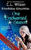 One Enchanted Season