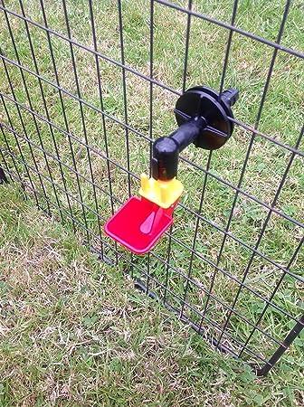 Taza Tamaño pequeño Auto bebedero para animales/gallina/jaula de incubar huevos en relieve de pollo automático: Amazon.es: Jardín