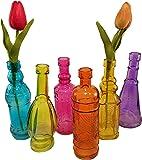 Decorative Colored Vintage Glass Bottles for Bottle Tree, the Garden, or Flower Bud Vases - Set of 6, Multicolor, 6.5-inch Bottles