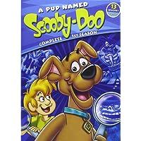 A Pup Named Scooby-Doo: Season 1
