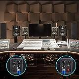 Pyle-Pro Amplifier Footswitch, 30 Feet