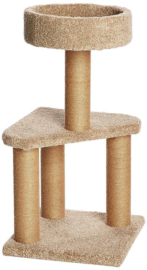 meilleure valeur style exquis professionnel de la vente à chaud AmazonBasics - Tiragraffi ad albero per gatti, Medio