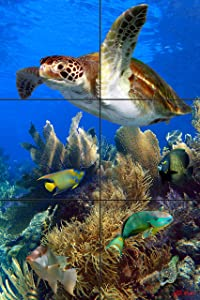 Deep on The Reef Tile Mural 12 x 18 Inches | Beautiful Under Water Photography Printed on Ceramic Tiles | Original Photos by Florida Keys Artist Nadine and Glenn Lahti