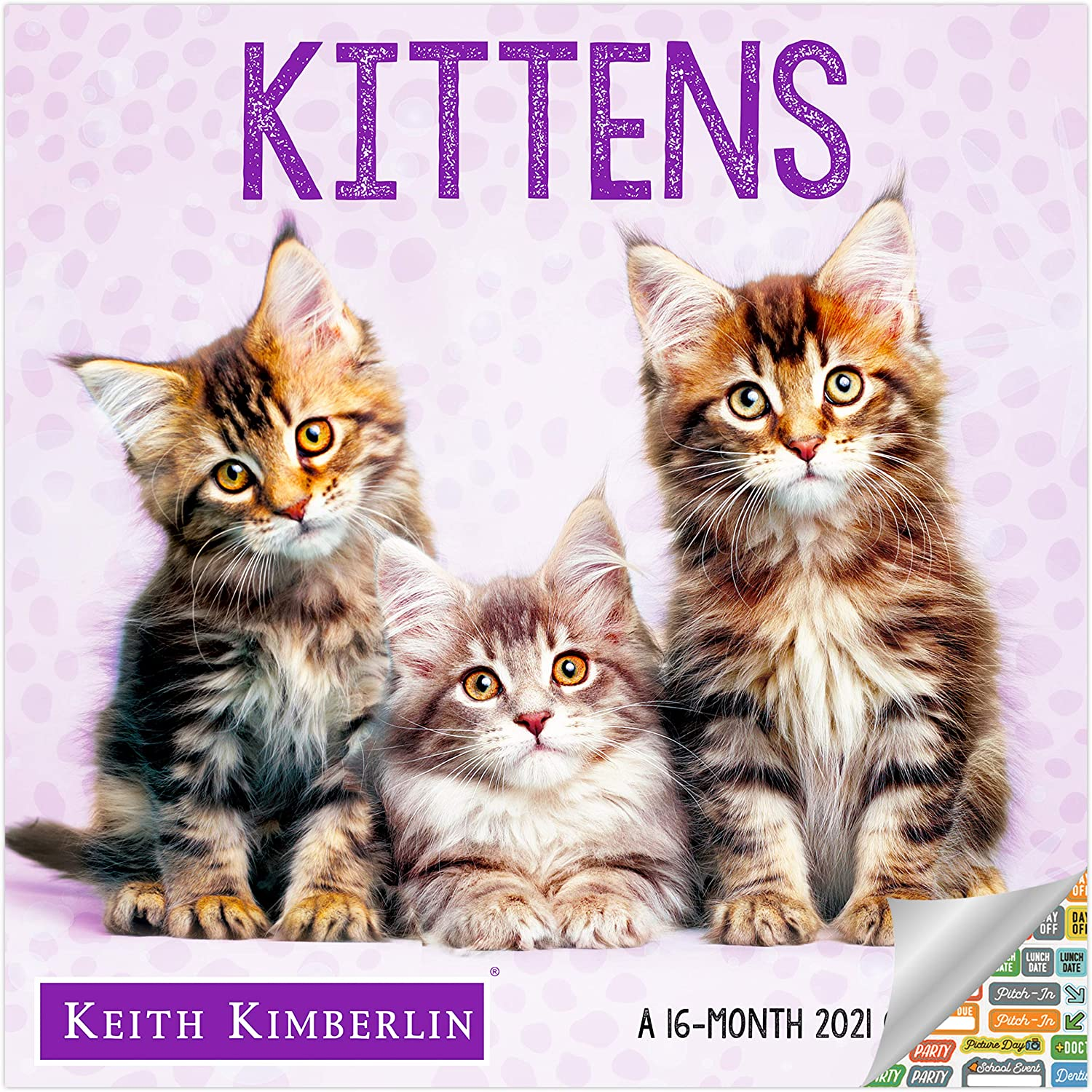 Keith Kimberlin Kittens Calendar 2021 Bundle - Deluxe 2021 Kittens Wall Calendar with Over 100 Calendar Stickers (Kitty Gifts, Office Supplies)