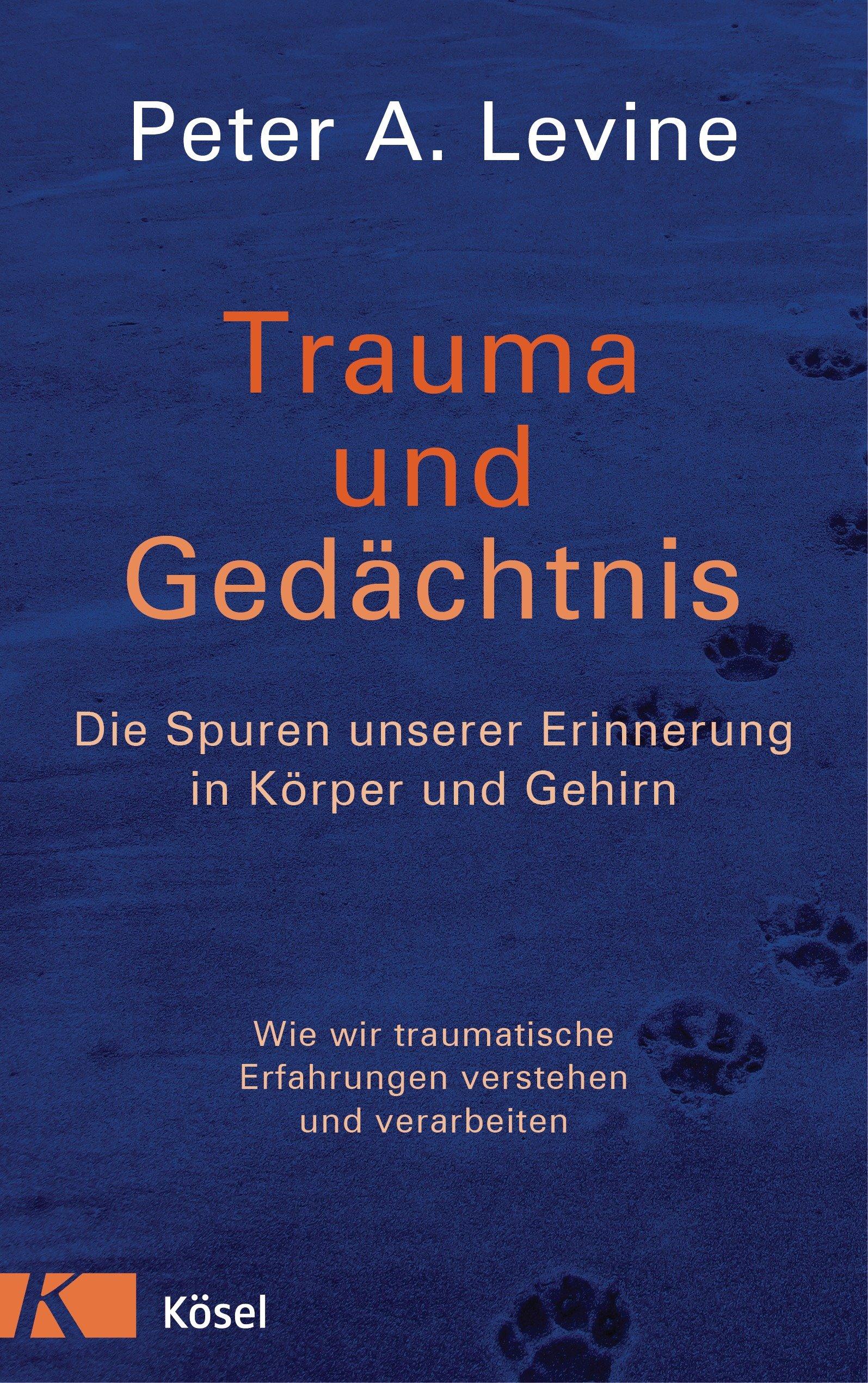 Trauma Und Gedächtnis  Die Spuren Unserer Erinnerung In Körper Und Gehirn   Wie Wir Traumatische Erfahrungen Verstehen Und Verarbeiten