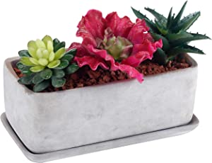 Window Boxes Amazon Com