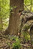 ALPS OutdoorZ NWTF Terrain Hunting Seat, Mossy Oak